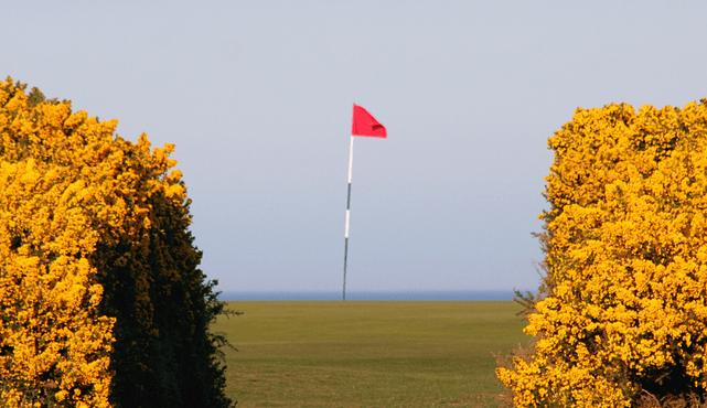 focus during golf shot